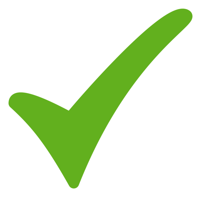 Success Check Mark